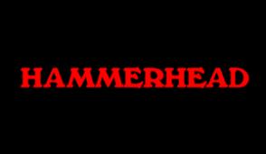 Hammerhead Marine Construction Inc.